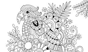 how to draw zentangle patterns hobbycraft blog