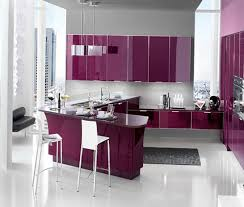 paint for metal kitchen cabinets 20 metal kitchen cabinets design ideas buungi