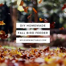 51 best fall images on