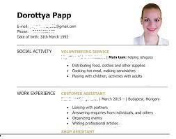 Profile In Resume Cover Letter Sample Kitchen Porter Descriptive Essay Rubric