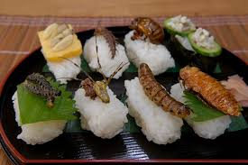 insectes dans la cuisine insectes comestibles