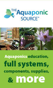 how to use fish to grow fresh vegetables with aquaponics