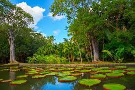 World Botanical Gardens 10 Beautiful Botanical Gardens In The World