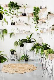 Types Of Indoor Plants Ikea Plant Stand Above A Satsumas Pedestal Plant Table With A