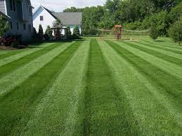 lawn mowing richfield oh 330 620 6200 u2013 4 seasons services lawn care