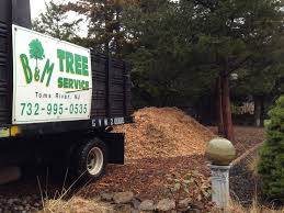 free wood chips b and m tree service