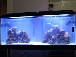 55 gallon aquarium light 55 gallon fish aquarium gallon fish tank stand 55 gallon fish tank