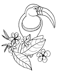 popular bird coloring pages free coloring 9452 unknown