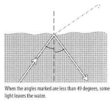 In Which Would You Expect The Best Transmission Of Light Critical Angle Reflection Light U0026 Refraction Science Activity