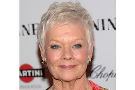 judi dench hairstyle front and back of head judi dench hairstyle