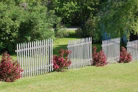 Shrub Garden Ideas Fence Line Landscaping Ideas For Creative Homeowners