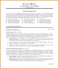 resume summary exles resume customer service resume summary