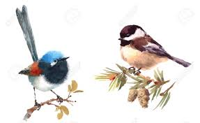 watercolor tutorial chickadee fairy wren and chickadee two birds watercolor hand painted