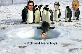 Pittsburgh Penguins Memes - ecf 1 pittsburgh penguins vs 4 boston bruins series thread