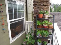 apartment patio herb garden staradeal com