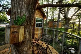 tree house rentals near