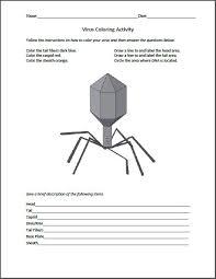 virus worksheet worksheets releaseboard free printable