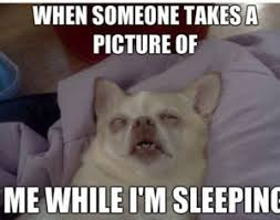 Sleeping In Meme - funny sleep memes best collection of can t sleep pictures