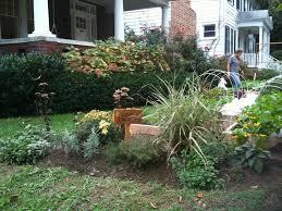 native plant garden design native plant u0026 pollinator gardens love and carrots