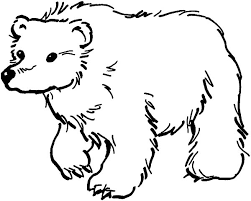 coloring bear coloring pages preschool printable bear coloring