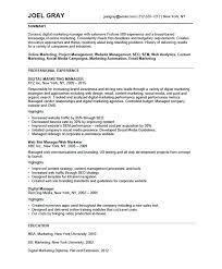 harvard resume sle harvard resume smartness design application resume resume