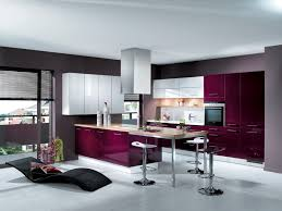 purple kitchen decorating ideas living room modern kitchen decoration with purple kitchen cabinet