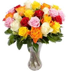 multi colored roses san diego wholesale flowers florist bouquets multi colored