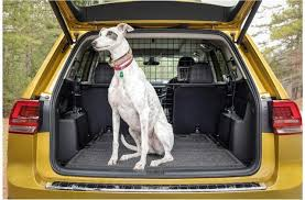 11 best cars for dogs u s news world report