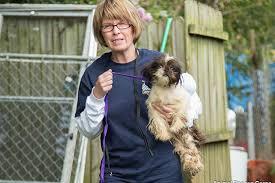 affenpinscher animal planet operation unbridled spirit u2013 puppy mill rescue animal planet