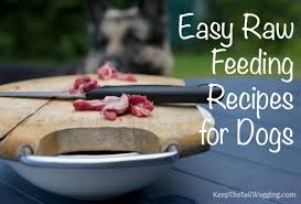 easy raw dog food recipe emu and diy dog treats keep the tail