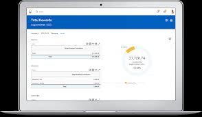 compensation management software system workday