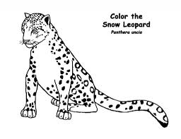 leopard coloring pages animals printable coloring pages coloringzoom