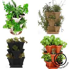 herbkits com herb seeds and supplies kits and more u2013 true leaf