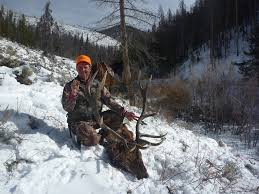 colorado semi guided elk hunts david parri u0027s famous authentic colorado hunting experience