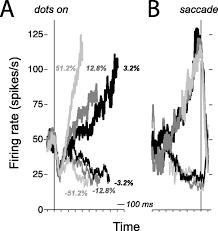 neural activity in macaque parietal cortex reflects temporal