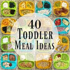 40 healthy toddler meals