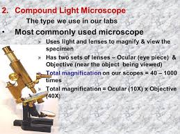 compound light microscope facts tools of the biologist the incredible world of microscopes video