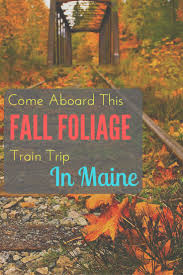 New England Foliage Map by Best 20 Maine New England Ideas On Pinterest Fall In New