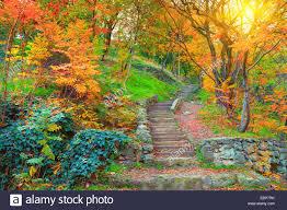 Georgia Botanical Garden by Botanical Garden In Tbilisi In Autumn Georgia Country Stock Photo