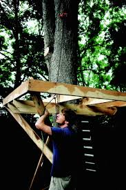 How To Frame Out A Basement Window How To Build A Treehouse For Your Backyard Diy Tree House Plans