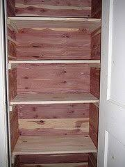 closet ideas how to do a diy cedar lined closet closet diy and