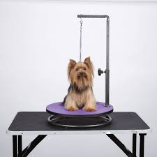 grooming table top material 144 best groom instrument images on pinterest pet grooming dog