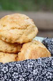 best 25 2 ingredient biscuits ideas on pinterest 2 ingredient