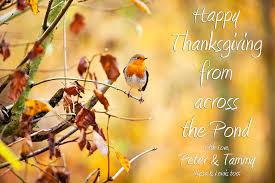 tammylynn blogs happy thanksgiving