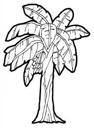 how to draw a banana tree banana tree drawing clipart free to use