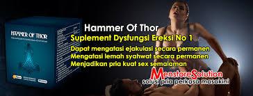 jual alamat toko hammer of thor sofifi lakiperkasa space jual