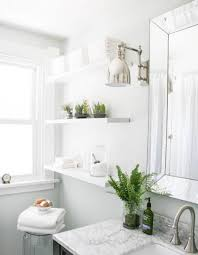 awesome plants for bathrooms contemporary home design ideas