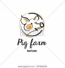 pig head images illustrations vectors pig head stock photos