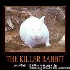 Monty Python Meme - monty python rabbit meme