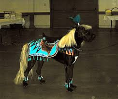 halloween horse 9 dogs who totally nailed halloween rover com